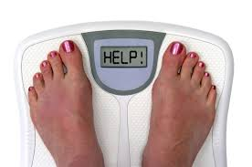 green tea helps control obesity